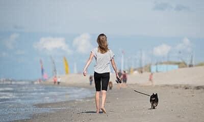 Hond uitlaten op het strand