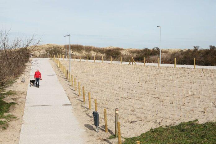 strandpost 6