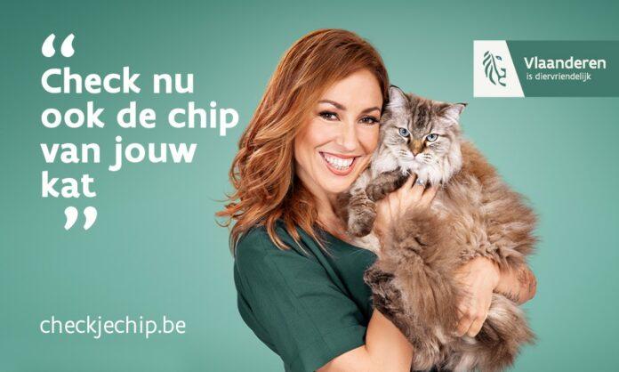 chip voor huisdieren
